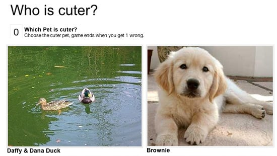 Keep Playing Which Pet Is Cuter!