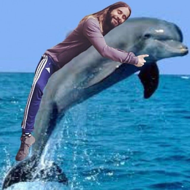 Jared Hugging a Dolphin