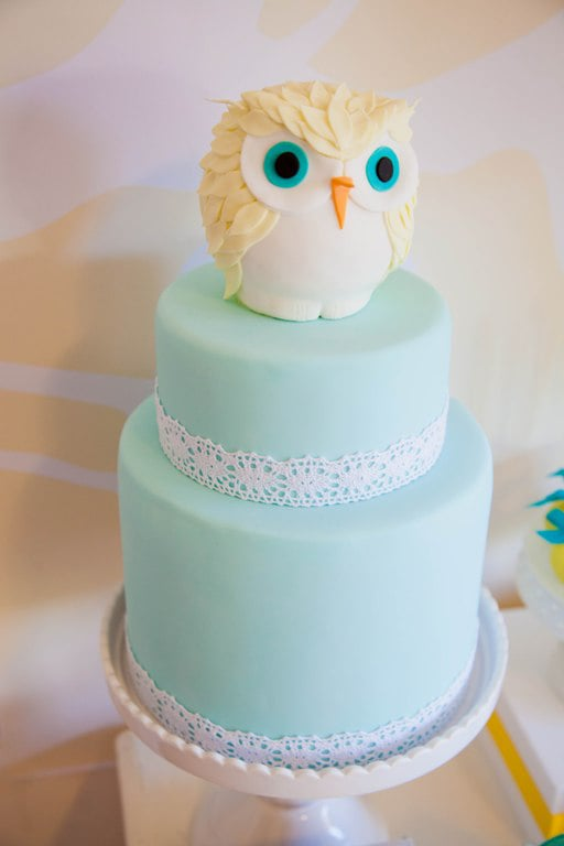 Whoooo's That on Your Cake?
