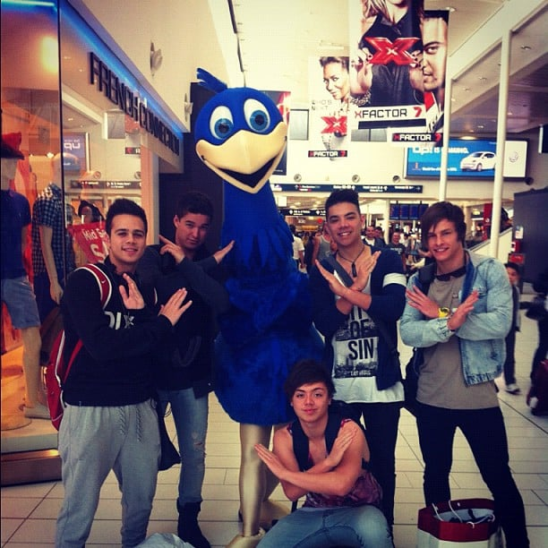 The Collective met a feathered fan at Sydney Domestic Airport. Source: Instagram user zachariahrussell