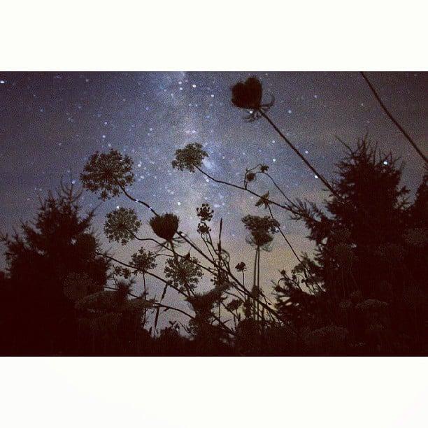 Stargaze From Your Backyard