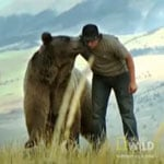 """Tune in Tonight: Official Launch of a New Network, """"Nat Geo Wild"""""""