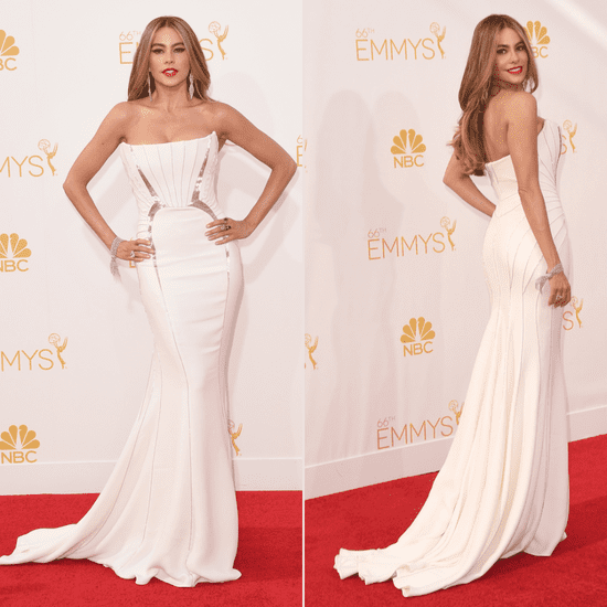 Sofia Vergara's Roberto Cavalli Dress at Emmys 2014