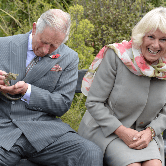 Prince Charles and Camilla Attacked by a Bee
