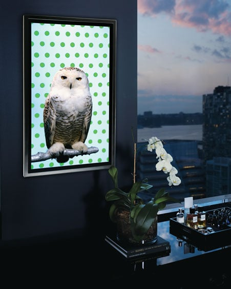 "This ""Snowy Owl"" by Robert Wilson ($70,000) is for the ultimate art (and owl) fan. Artist Robert Wilson juxtaposed this owl against a cute polka-dot background (perfect for your city apartment), but that's not all. This creature also breathes, blinks, or shifts when you least expect it. Woot, woot!"