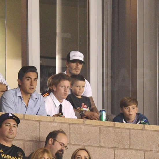 Cruz watched the game from David's lap.