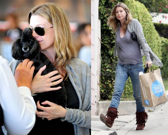 Photos of Pregnant Ellen Pompeo With Her Toy Poodle at LAX