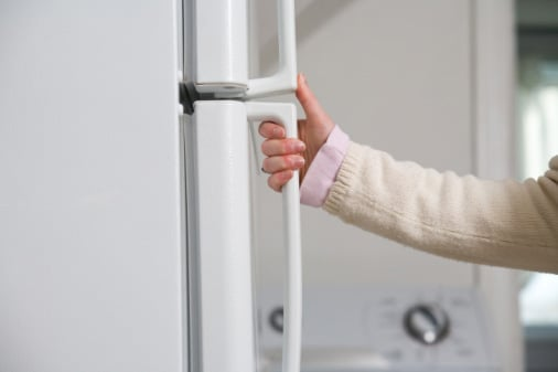 Close the Refrigerator to Prevent Food Poisoning