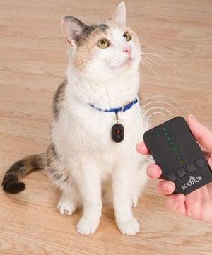 Lost Feline Locator Homing Tags
