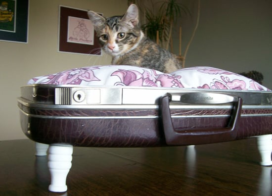 Merry Etsy-mas: Vintage Suitcase and Briefcase Pet Beds