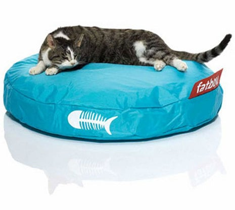 Pampered Pals: Fatboy Catbags