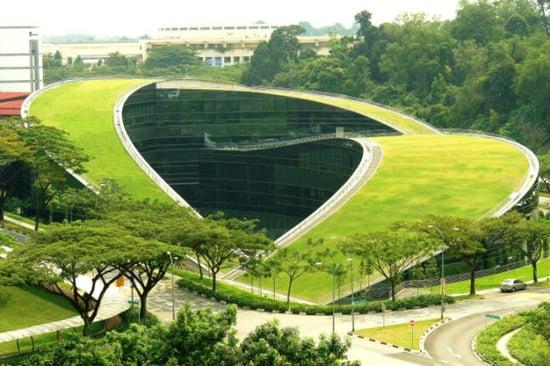 Casa Verde: Design-Savvy Green Roof
