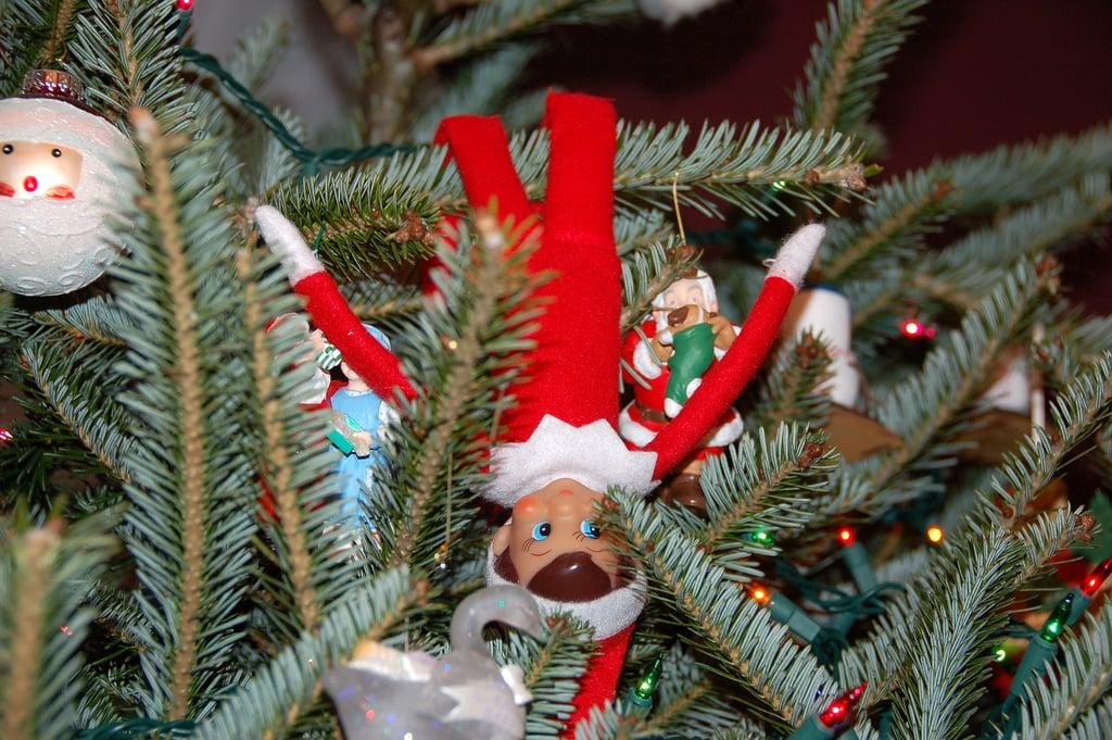 A Christmas Tree Classic
