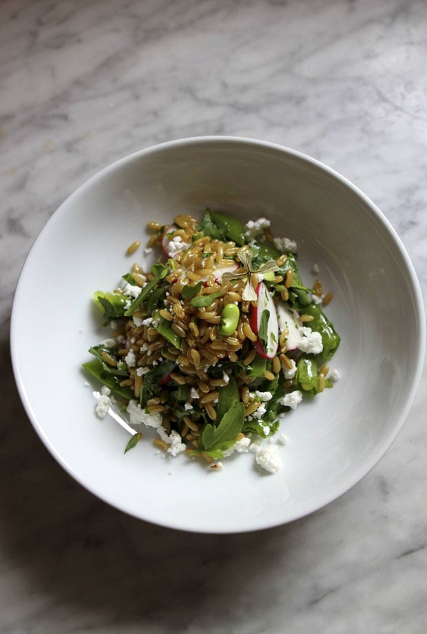 Farro Salad With Fava Beans and Feta