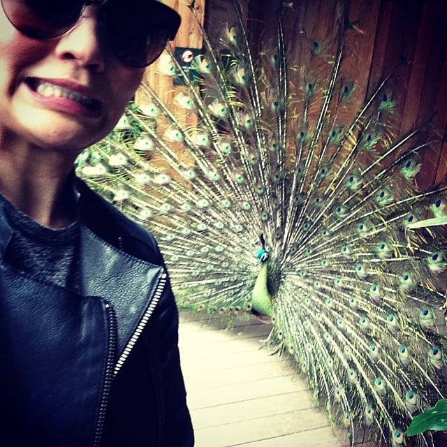 Chrissy Teigen's peacock selfie fared a lot better than Kim Kardashian's elephant pic. Source: Instagram user chrissyteigen