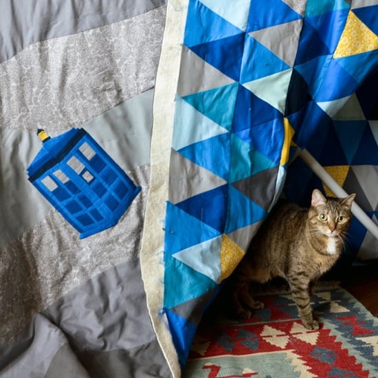 The Cats of Doctor Who