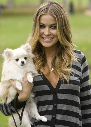 In the Spotlight: Celebs (and Pets) Come Bark For The Cure