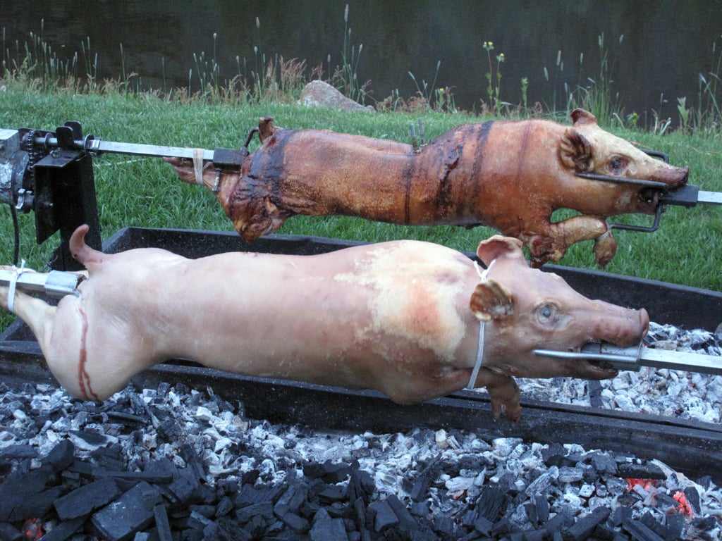 Whole Pigs at the Wines From Spain Party