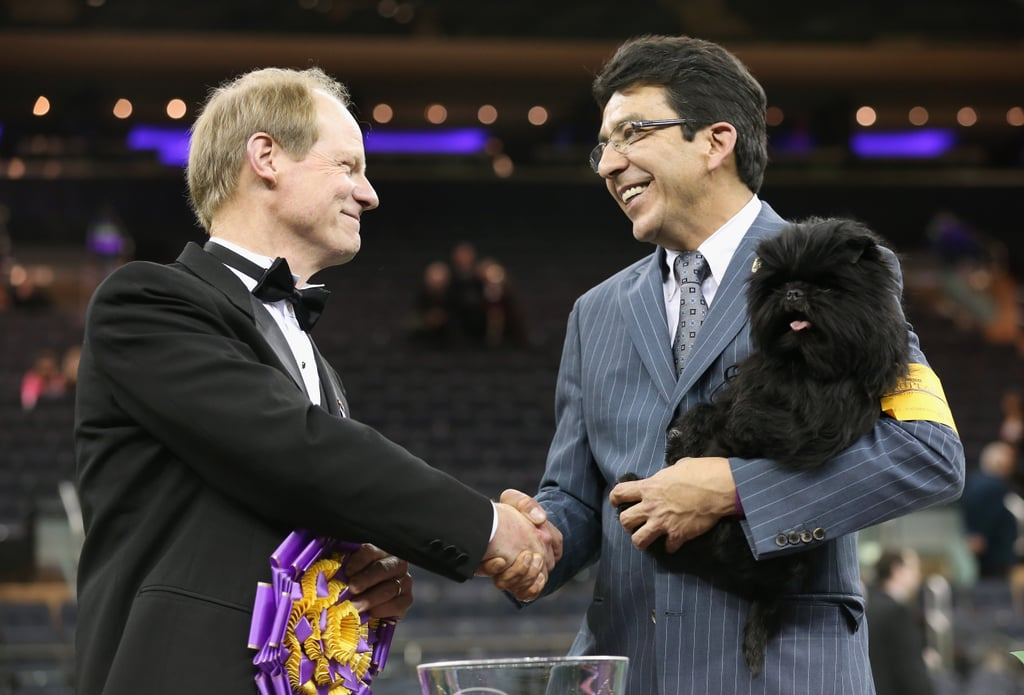 Best in show judge Michael Dougherty congratulated dog handler Ernesto Lara after his dog, Banana Joe, won the coveted prize.