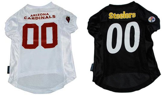 Get Your Pets Geared Up: Cardinals vs. Steelers
