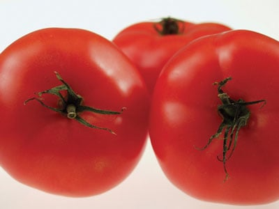 Adding Fat to Tomatoes Helps the Body Metabolize the Nutrients