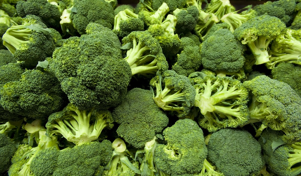 The Winter Food: Broccoli