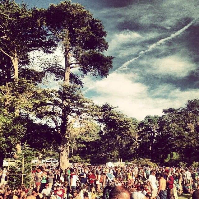 Attend the Hardly Strictly Bluegrass Festival