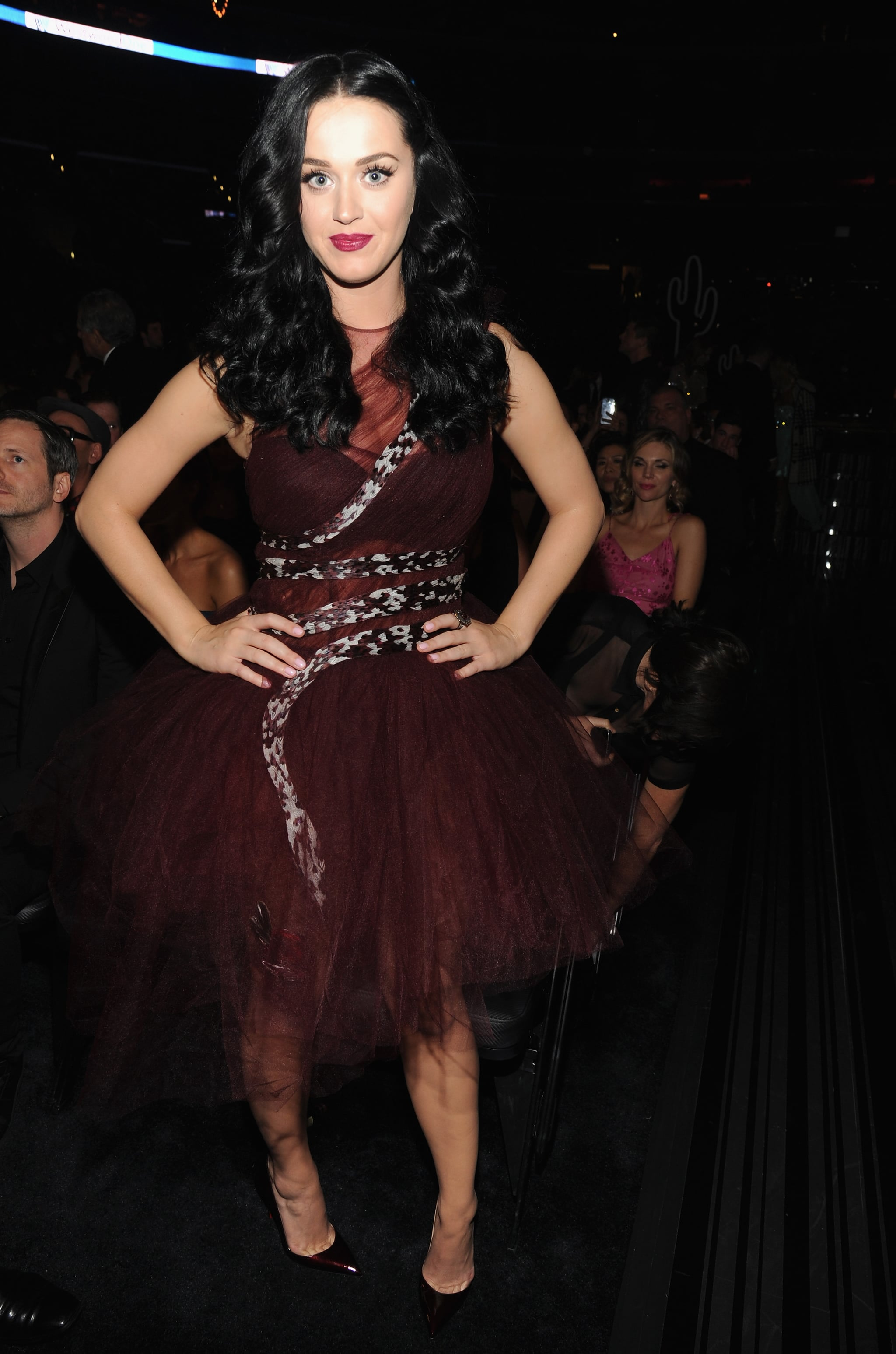 Katy Perry's Audience Look