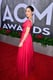 Olivia Munn dazzled on the red carpet.