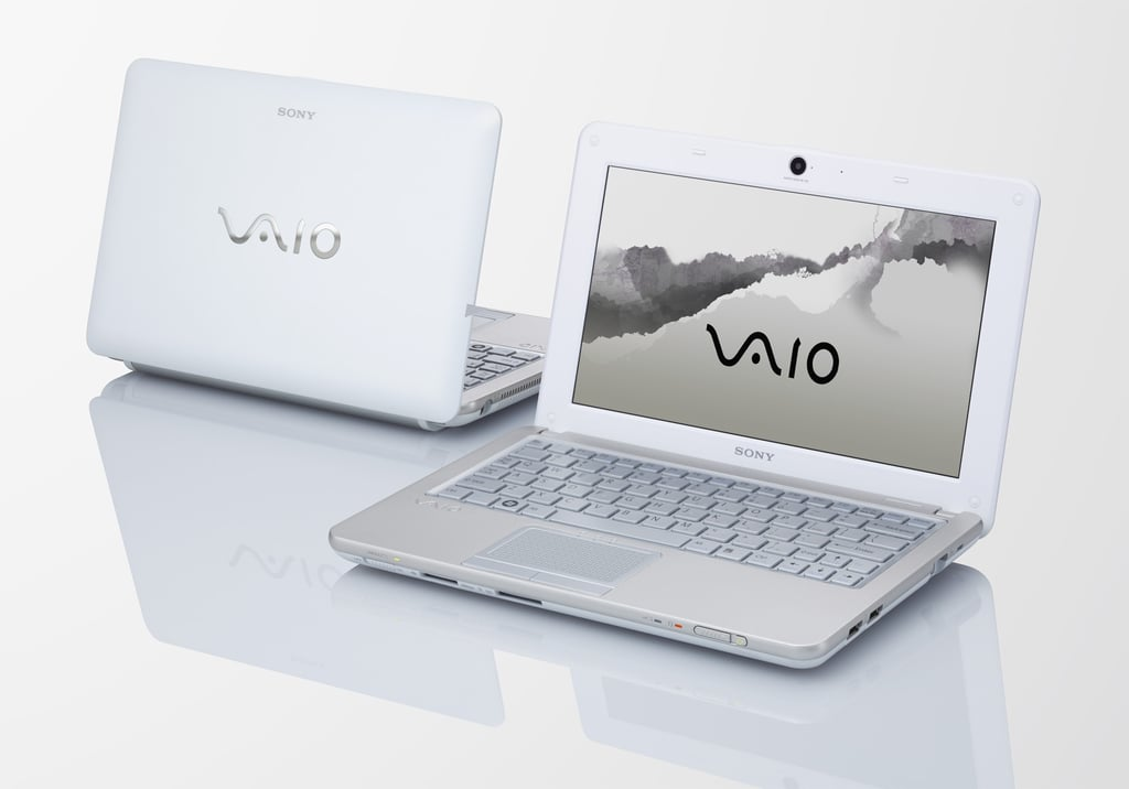 Sony VAIO W