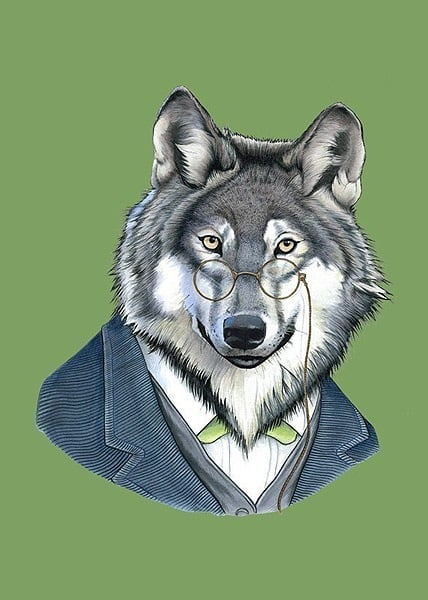 Jennifer suggested wolves as her favorite in my Facebook poll. With the upcoming movie Red Riding Hood on everyone's radar, as well as the excitement over more werewolf action in Breaking Dawn, wolves are a safe bet, even more professorial versions, like this Berkeley Illustration Wolf Print ($10).