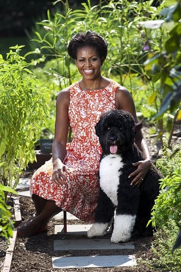 Michelle looked adorable in this official White House photo, with her cutest accessory, Bo, no less!