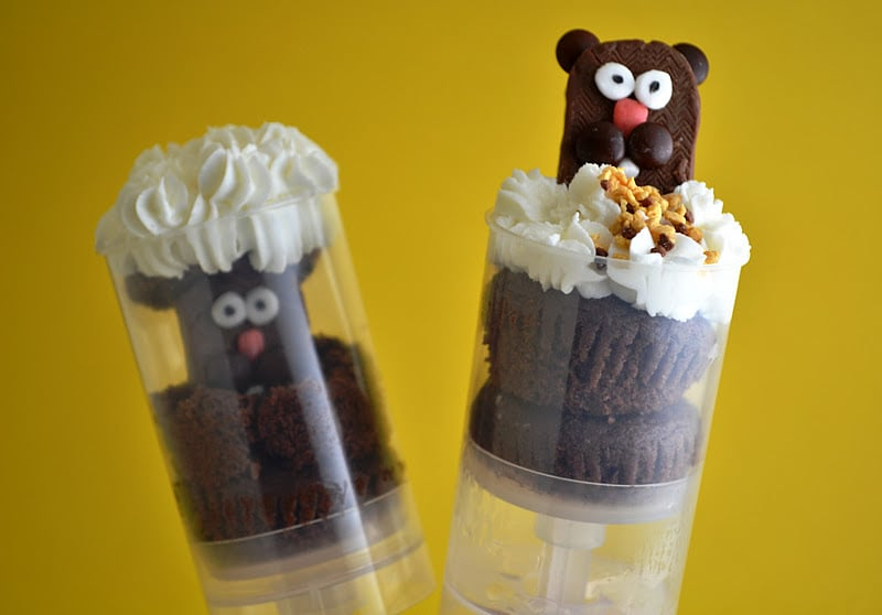 Pushable Groundhog Pops