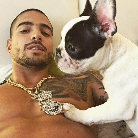 Maluma's Dog, Priti