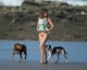 Gisele Bündchen walked on the beach with Vivian and her dogs.