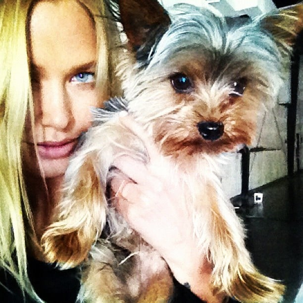 Lara Bingle got cluse to a super cute little puppy. Source: Instagram user mslbingle