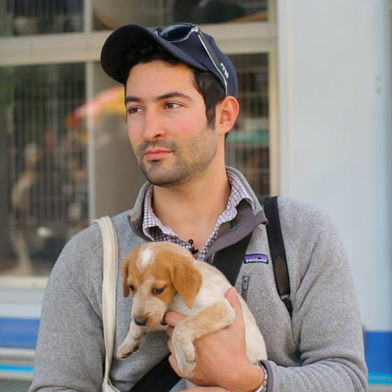 Meet The Dogist, Elias Weiss Friedman