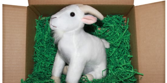Happiness Is This Website That Sends Tiny Goats To People