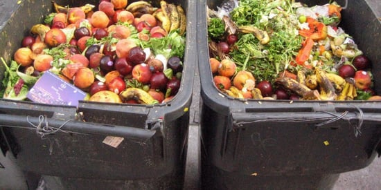 Farm To Landfill: The Cost Of Food Waste In America
