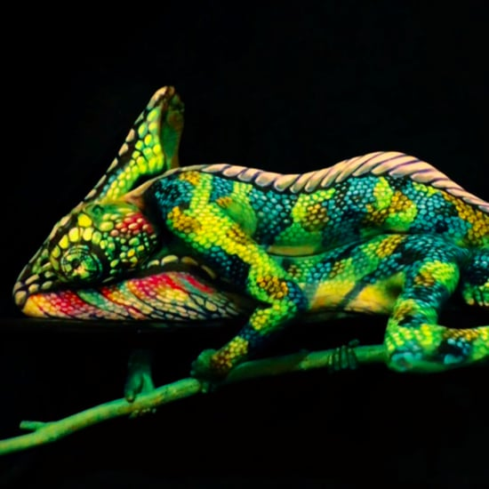 Chameleon Body Paint Video