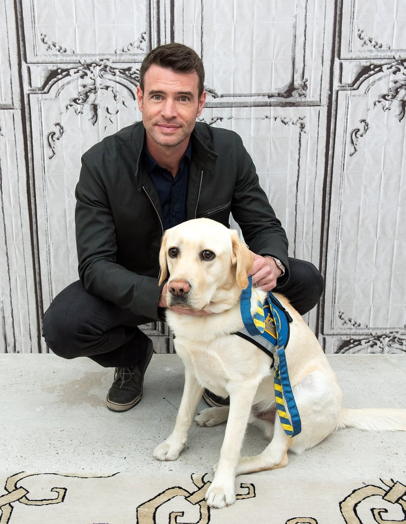 Scott Foley got down on Alf the service dog's level during a May 2015 appearance in NYC.