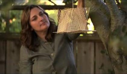 DIY: Eco Chopstick Birdhouse