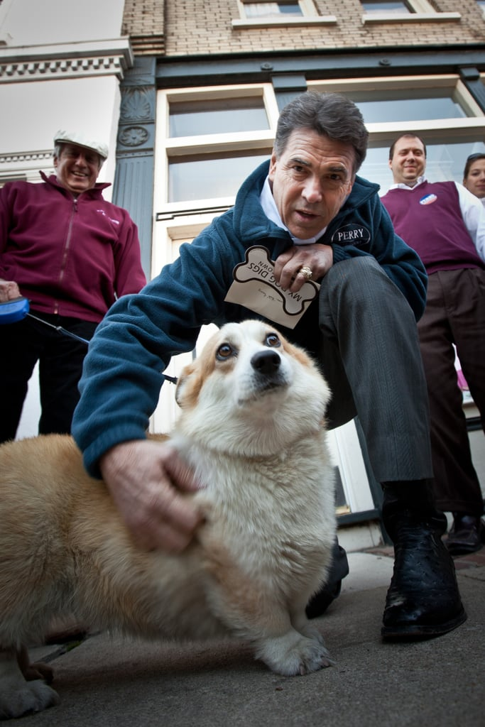 Rick Perry stops to give a rallying Corgi a grateful scratch when his campaign traveled through South Carolina.