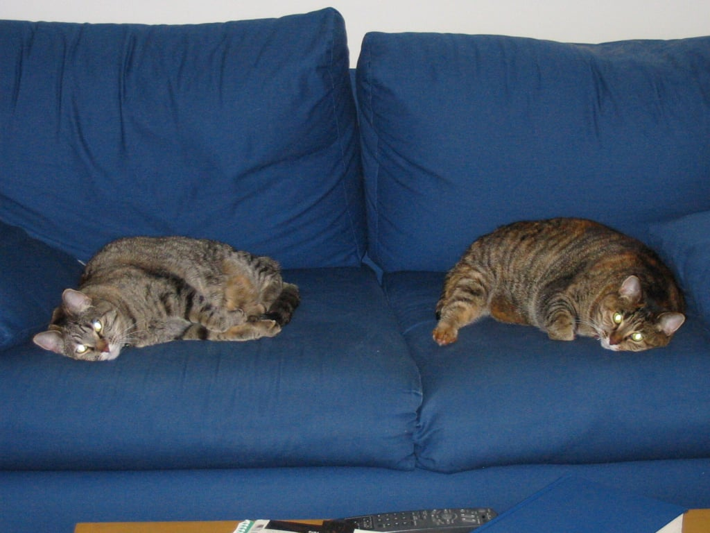Don't even think about sitting here. Source: Flickr User Neil and Kathy Carey