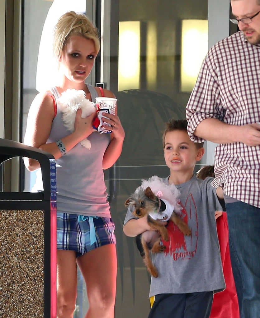Britney Spears and her sons Sean and Jayden took their puppies to the vet in West Lake Village Sunday.
