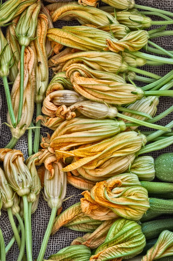 What to Buy: Squash Blossoms