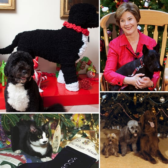 Presidential Pets Celebrate the Holidays at the White House