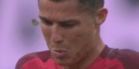 Moth On Ronaldo's Face Becomes Star Of Euro 2016 Final