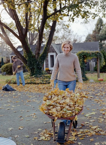 Casa Quickie: Mulch Your Fall Leaves