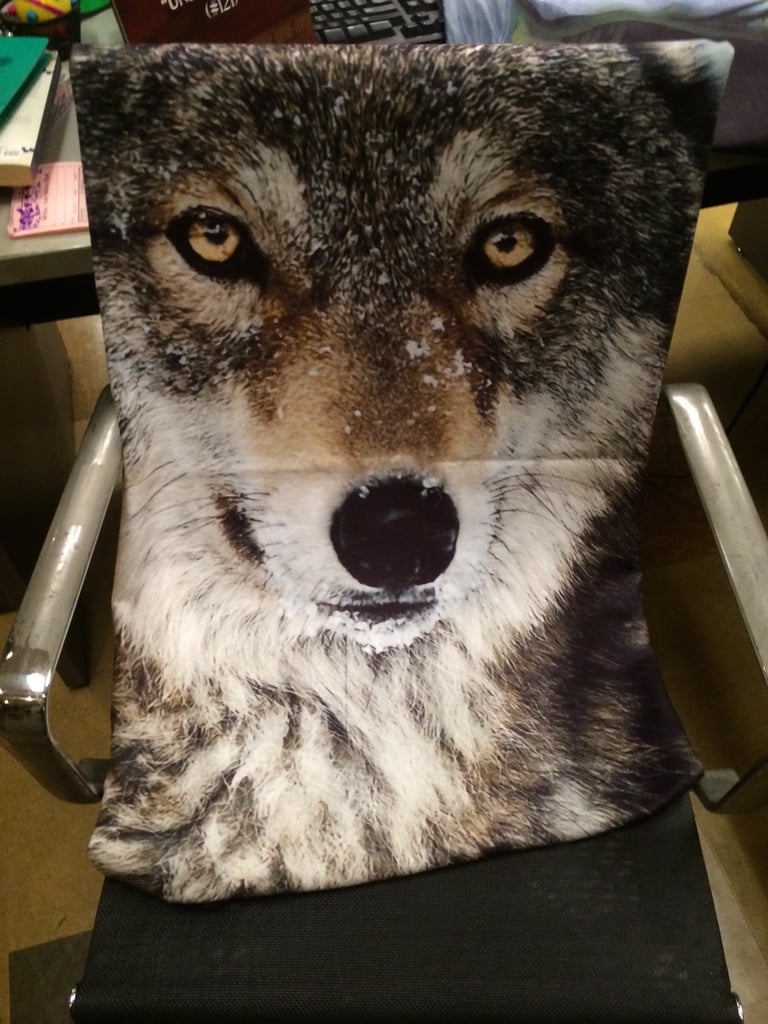 You know you wanted a close-up of Wolfie, Gina's prized possession.